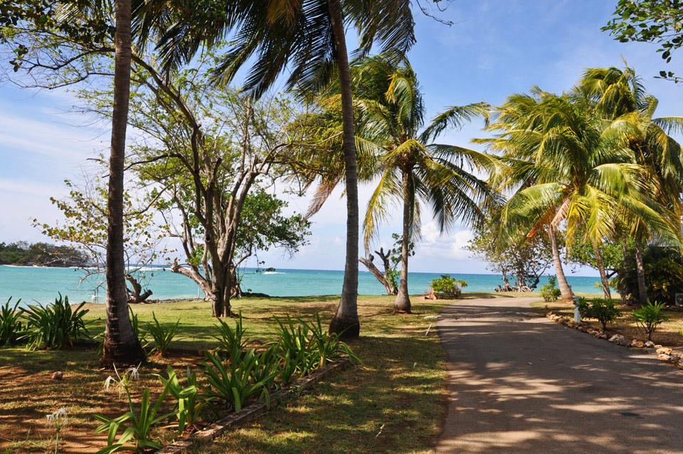 Point Village Jamaica Monkey Island